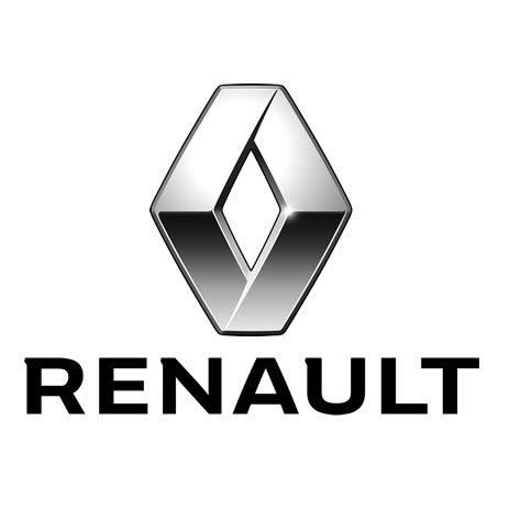 Renault Van Side Bars And Steps